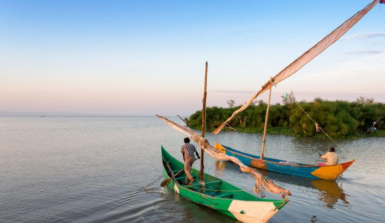 Immersion ougandaise : sur les traces des grands singes