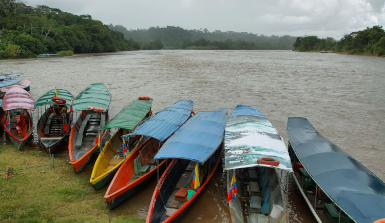 Riviere Misahualli