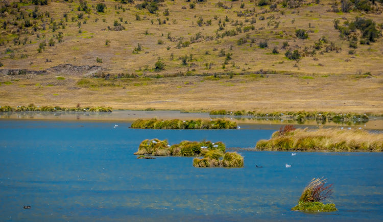 Lac Limpiopungo