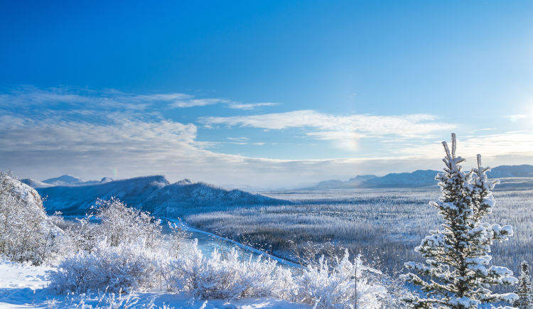 Aventure hivernale au Yukon